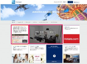 amexconnect_campaigns